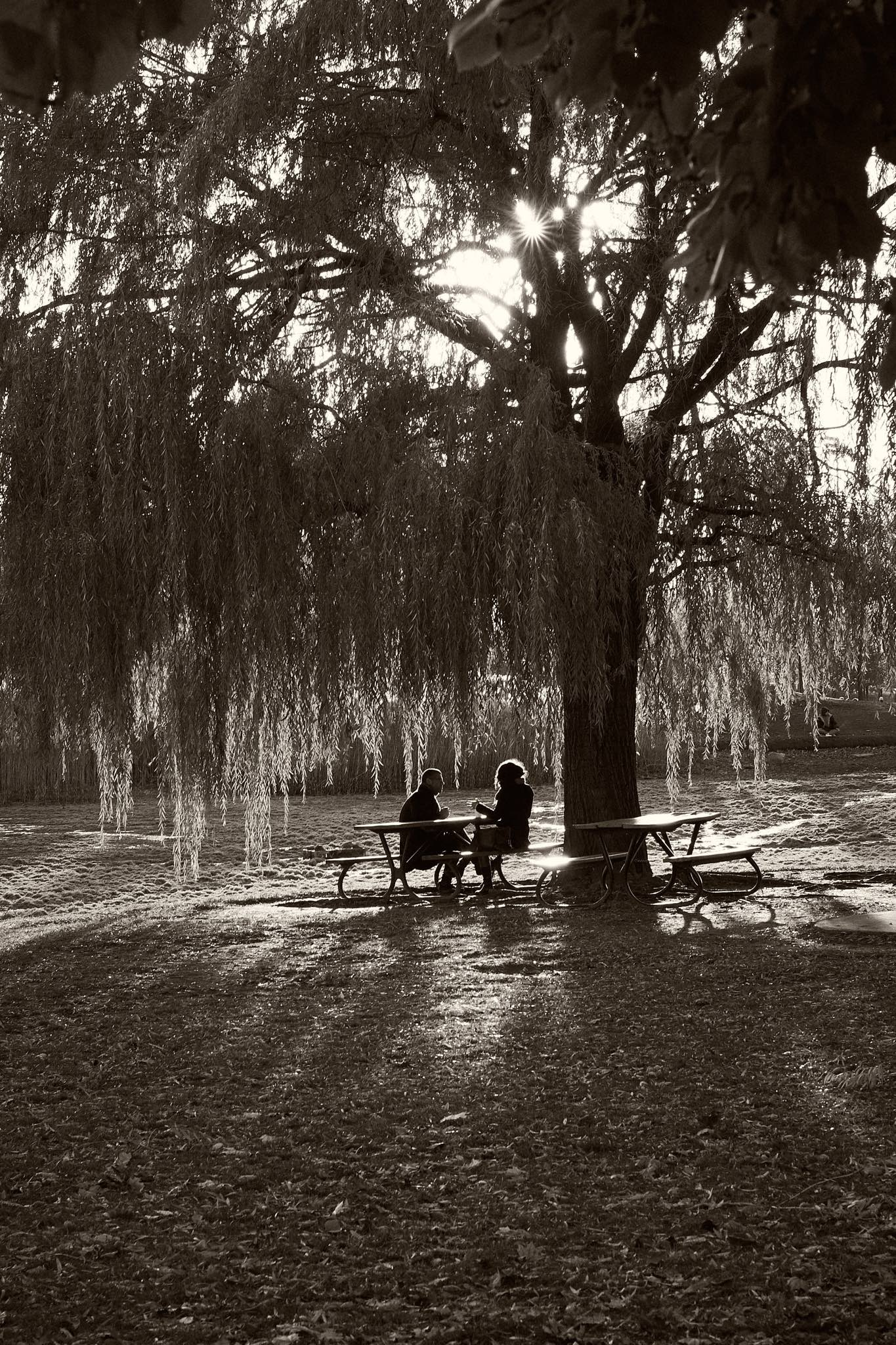 A couple talks in Parc Jarry - black and white